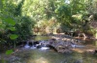 Le charme des rivieres en Provence verte