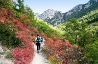 Randonnées dans le Parc naturel régional du Verdon